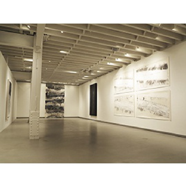 Zheng Chongbin's works, Installation view at RH Contemporary Gallery, New York